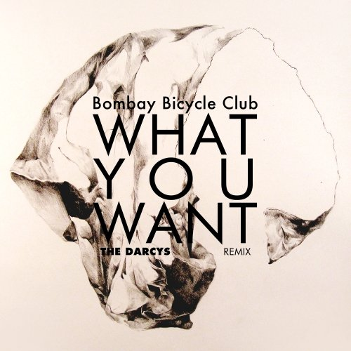 Bombay Bicycle Club – What You Want (The Darcys Remix)