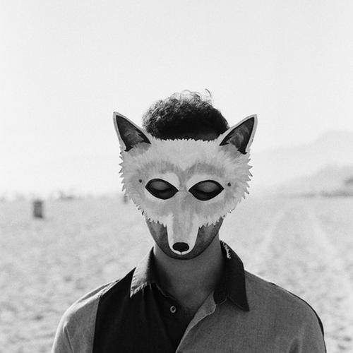 Wolf Colony – Paradise