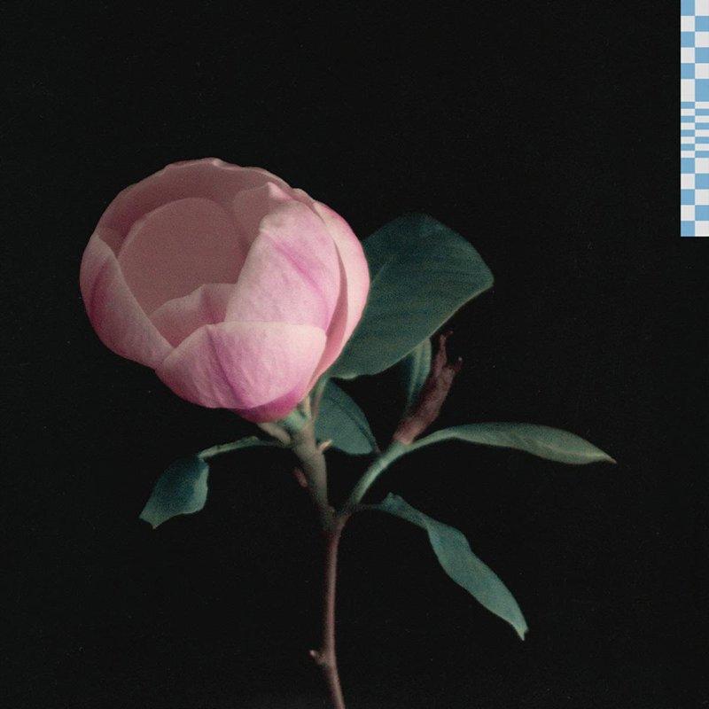 Zachary Knowles – magnolia EP